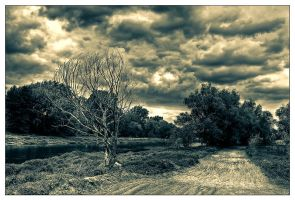 Too late for Rain by Riffo