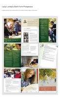 LLS 6th Form Prospectus by weyforth