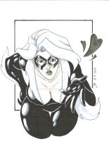 BlackCat by jbugx