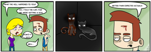 cats and dogs by grossboy