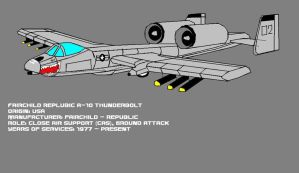 A-10 Thunderbolt by pete7868
