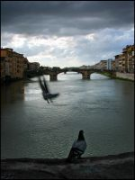 View from Ponte Vecchio 2 by laether-mad