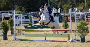 STOCK Canungra Show 2013-33 by fillyrox