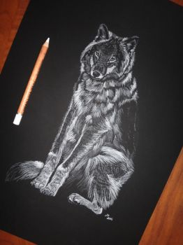 White Wolf by she0wolf