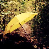My Umbrella. by 6Artificial6