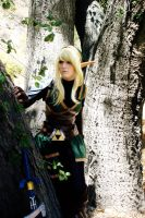 Valley Of the flood- Hero of Hyrule by xCUDDLES