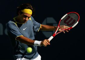 federer by andiman