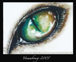 Acrylic Eye by vonumbourg