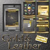 Gold and Leather by Walkingtall85