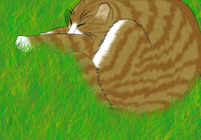 Nap in the Grass by wolfprincess728
