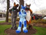 TheKareliaFursuit fursuiters at MFF2016. by TheKareliaFursuits