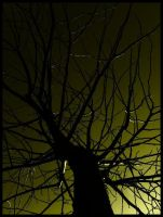Tree Of Nightmares 2 by Malleni