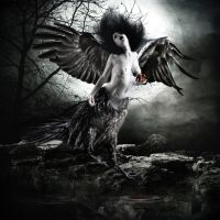 HARPY,THE SPIRIT OF DEATH... by chryssalis