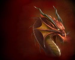 Dragon head Wallpaper by Deligaris