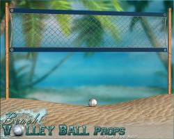 Beach Volley Ball Props Only by cosmosue