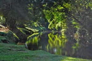 Water Landscapes - Reflexion by Law-Concept