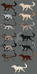 Caid Sidhe - Leucrote Pelt Reference by TheLeopardwerecat