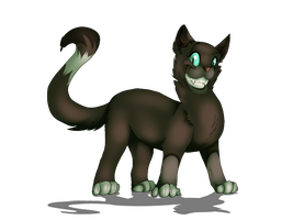 Kitten :P by Hazelthedragoness