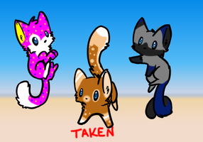 Kitten Adoptable Pack 2 by FaithsAdoptables