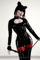 Playtime Kitty too by aka-photography-uk