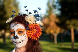 Day of the Dead Girl by NikkaBrooks-Cullum