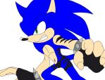 Sonic The Hedgebeast in Sonic's Colors - 5 by AirSharkSquad