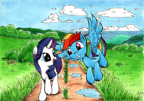 Rainbow Dash and Rarity by ECMonkey