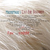 MM Cat Fur Texture Pack by MagpieMagic