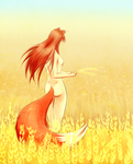 Spice and Wolf: Wheat field. by Murasaki-no-Orenji