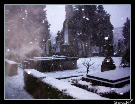 Cementerio nevado by shavasMM