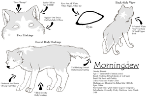 Morningdew Reference Sheet by wolfforce58