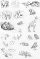 zoo sketches by Di---Chan