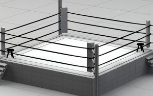 Boxing Ring Wireframe by Dmaghar