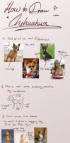 How to draw Chihuahuas by Torheit-die-Katze