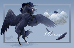 Raven by Mentalities