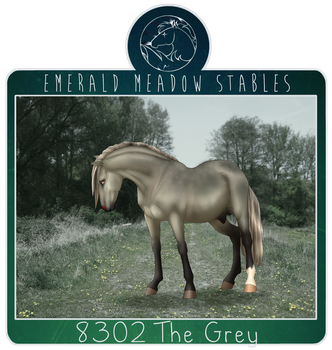 8302 EMS The Grey by just-sora