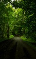 The Secret Road by Ardak