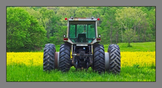 Tractor in field. L1040814, with story by harrietsfriend