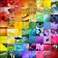 Colourful Memories by Minnu