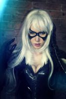 Black Cat (Felicia Hardy) by YumeJapanes