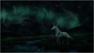 Under the Aurora Borealis by ethereal-foxx