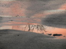 Iowa Sunset in a Puddle by thrikreed