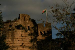 More of Caldicot Castle by Tinap