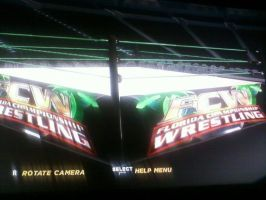 My Created FCW Arena by TheRumbleRoseNetwork