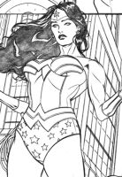 Wonder Woman panel 3 by DrewEdwardJohnson