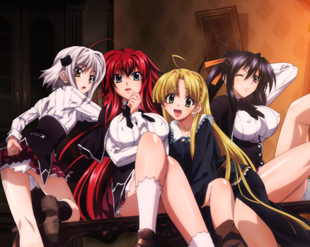 The Girls of High School DxD by TheZgreedeek