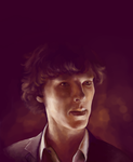 High Functioning Sociopath by batcii