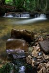 A trickle in the wood by CharmingPhotography