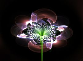 Basic Fractal Flower by Seph-the-Zeth