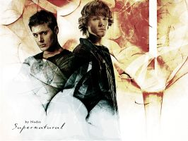 Supernatural in our blood by Nadin7Angel